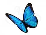 Бабочка 106
