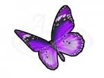 Бабочка 107